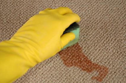 Làm sạch vết nước ép trái cây trên thảm
